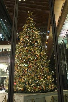 丸ビルの巨大クリスマスツリー 縮小