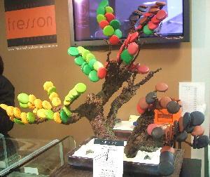 200901フランク・フレッソン マカロンの盆栽