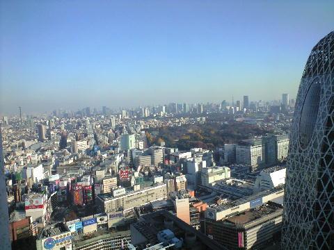 損保ジャパンからの眺め1