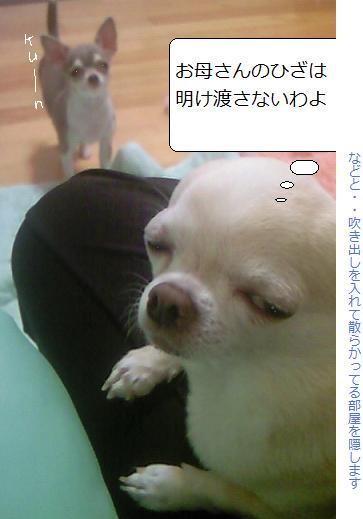 NEC_0562.jpg
