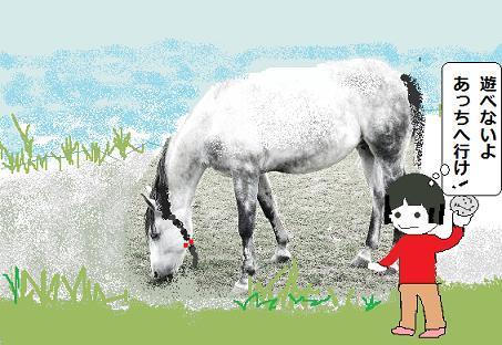 050-chevaux.jpg