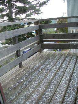 2010初雪.jpg
