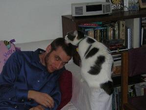 cats_3.jpg