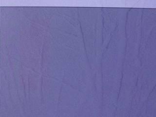液晶焼き付き - 左側に赤みが掛った縦の長方形に近い焼き付き、全体的には縦筋の焼き付き(これは壁紙の林の画像由来)