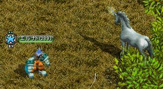 馬テイム1