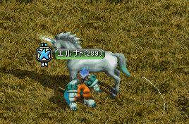 馬テイム2