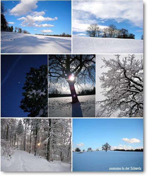 winter2006