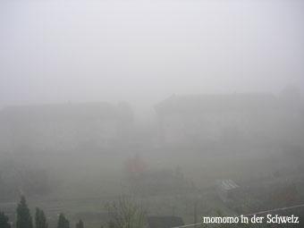 nebel051029