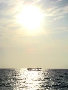 クジラ丸と夕日