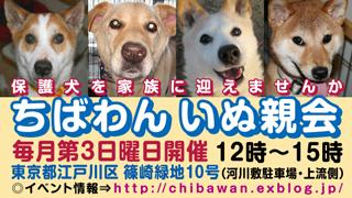 犬親会篠崎.jpg