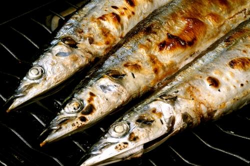 根室産トロ秋刀魚