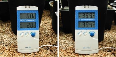 今年の最低温度と最高温度