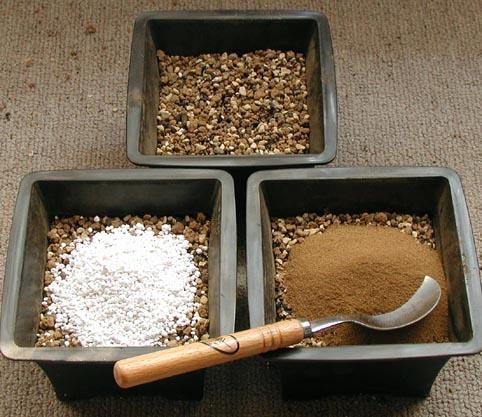 培養土実験1