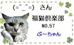 ☆福猫☆さんのところへジャンプ~♪♪