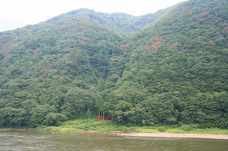 山形県戸沢村 白糸の滝。ナラ枯れが・・・