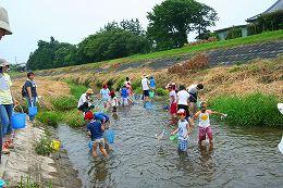 田尻川で魚とり1