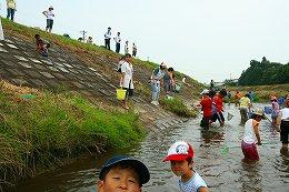 田尻川で魚とり4