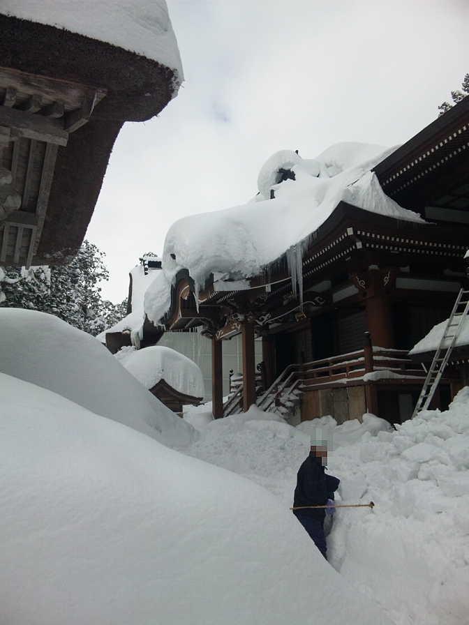 羽黒山の社殿と本殿