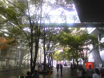 2008/08/30お散歩