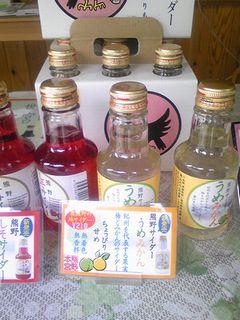 2008/09/05熊野発見1