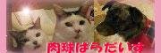 肉ぱらバナー