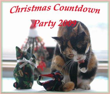 Gaviちゃんの'2009クリスマスカウントダウンパーティ