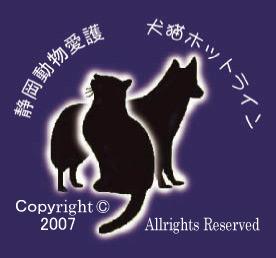静岡動物愛護 犬猫ホットライン