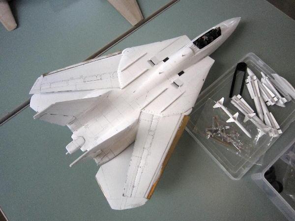 tomcat01.jpg