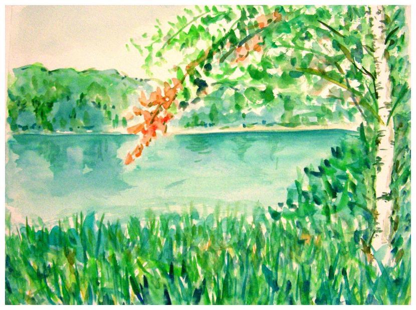 琵琶池湖畔の白樺