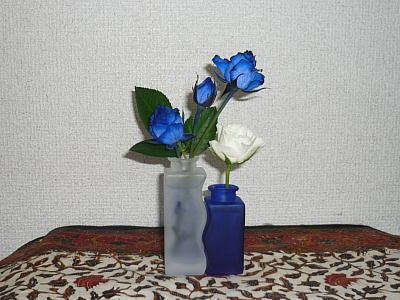 ネムさんからいただいた青いバラ