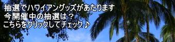 応募してハワイアングッズを当てよう!by楽天懸賞市場