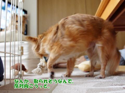 yomotsuku110821-5.JPG