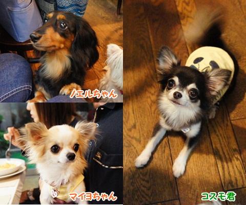 yomotsuku110924-4.jpg
