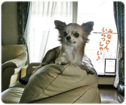 yomotsuku101023-15.JPG