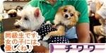 doukyuusei banner.JPG