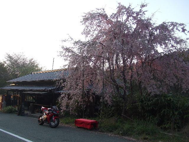 ご来光と湯布院温泉 073.JPG