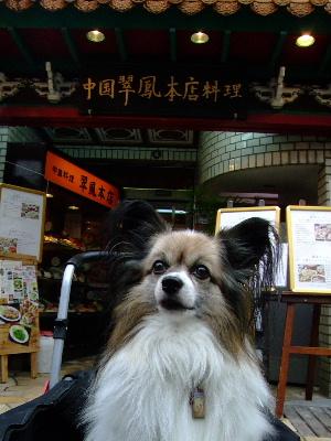 中華街1.JPG