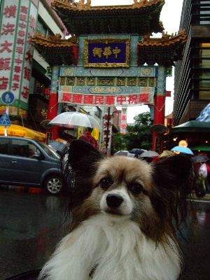 中華街12.JPG