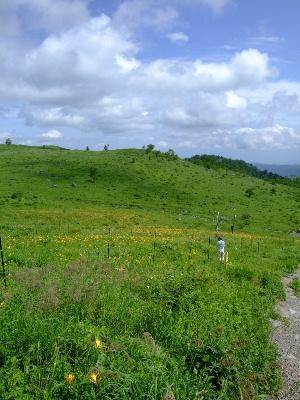 車山高原19.JPG