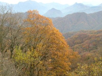 2011軽井沢13.JPG