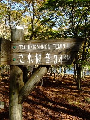 中禅寺湖1-7.JPG
