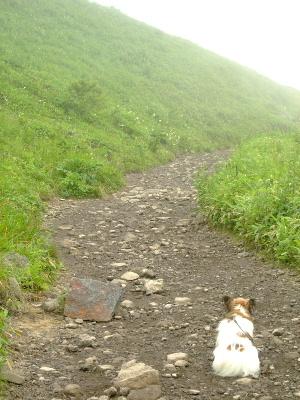 車山高原6.JPG