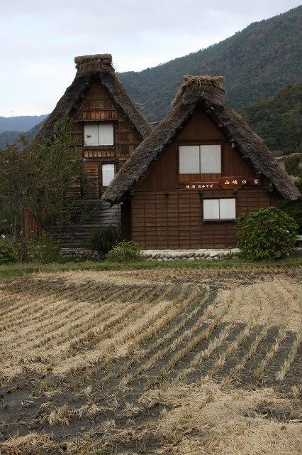 初秋の白川郷_10.jpg