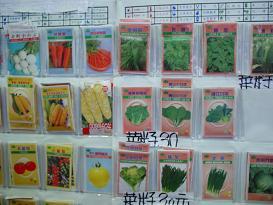 やっちゃんと台湾2006年4月 138.jpg