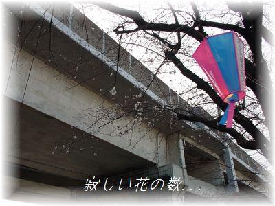 画像 526.jpg