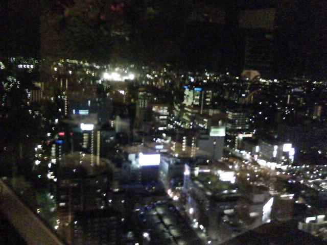 仙台の夜景2