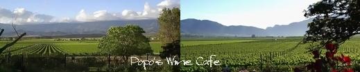 価値あるワイン お宝ワイン お値打ちワイン 毎日 セレクト 葡萄 美酒 倶楽部 ワインカフェ 楽天