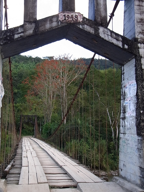 1945年の古橋.jpg