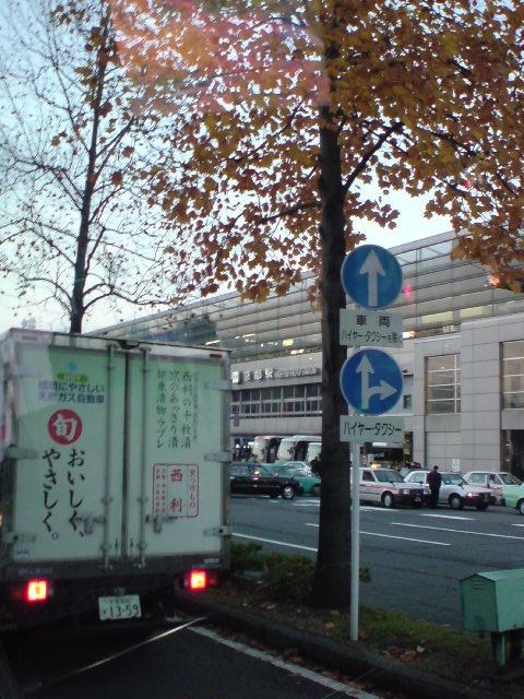 12月になっても京都にはまだ紅葉が残ってました。