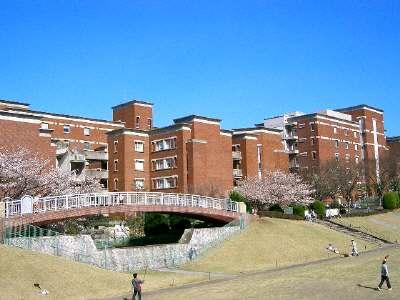 県立大学(左手)